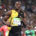 Usain Bolt Pets