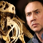 Nicolas Cage Once Owned a $150,000 Octopus That Helped His Acting