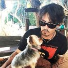 Johnny Depp & Amber Heard in an Apology Video for Dog Smuggling in Australia