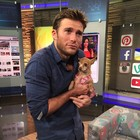Scott Eastwood The Funny or Die Bachelor for Dogs