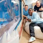 Tracy Morgan's Custom Shark Tank Costs $400k and Weighs 50 tons