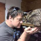 Owl remembers man who saved her life, gives him a big hug