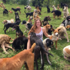 Tropical Pupper Paradise – Costa Rica Farm Sanctuary Home For Over 900 Strays