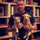Liev Schreiber adopts two orphaned puppies from Houston and our hearts melted