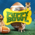 Puppy Bowl is back! Meet Team Fluff and Team Ruff