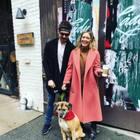 Hilary Duff & Matthew Koma Adopt Senior Dog