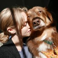 Amanda Seyfried Pets