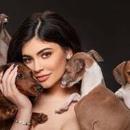Kylie Jenner Pets