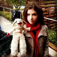 Anna Kendrick Pets