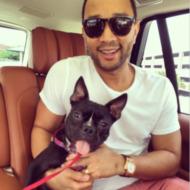 John Legend Pets