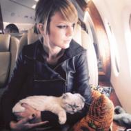 Taylor Swift Pets