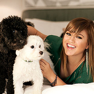 Kelly Clarkson Pets