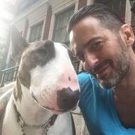 Marc Jacobs Pets