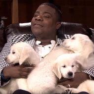 Tracy Morgan Pets