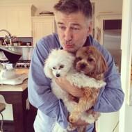 Alec Baldwin Pets