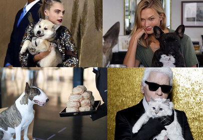 Designer Pets of the Fashion World and Their Celebrity Parents