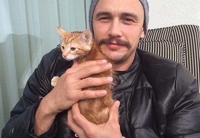 Top 8 Cat Obsessed Celebrities