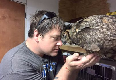 Owl remembers man who saved her life, gives him a big hug