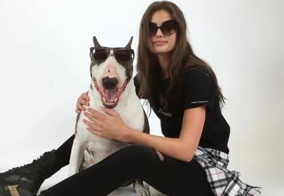Top ten celebrities and their pitbulls