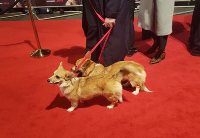 Royally cute guests on the red carpet for premier of The Crown steal the show