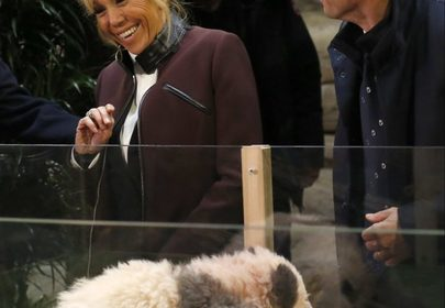 Baby Panda tries to take a bite out of France's First Lady