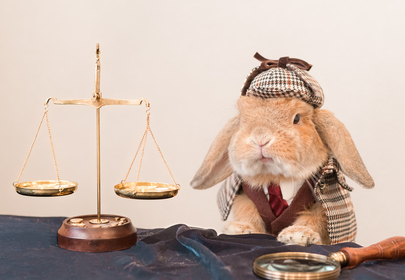 Your day just got better thanks to this impossibly cute cosplaying bunny