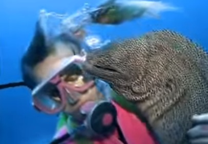 The story of a diver and moray eel becoming BFFs