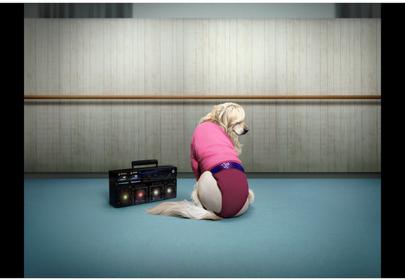 Dog Recreates Iconic Madonna Poses & We're Shook