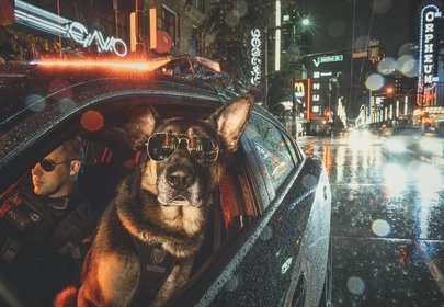 Good Boys Only: Vancouver Police Department Releases K9 Unit Calendar