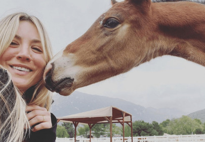 Kaley Cuoco Bids to Adopt The Horse Punched at the Olympics