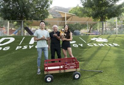 Cesar Millan advises pet owners not to get emotional when looking for a dog