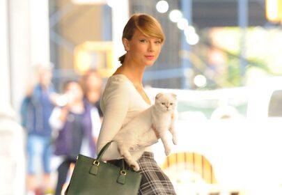 Taylor Swifts Cat is One of the Worlds Richest Pets