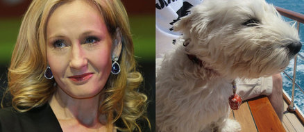 J.K. Rowling's Dog Just Saved Her Next Book
