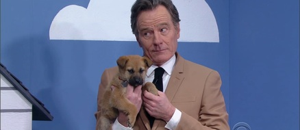 Bryan Cranston is a Liar (but only to get rescue dogs adopted)