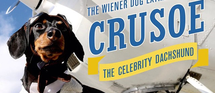 Crusoe the Wiener skyrockets to fame from Dog Blog in Crusoe's voice
