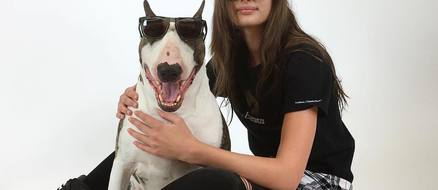 Top ten celebrities and their pitbulls