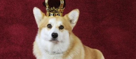 Corgi's replace actors on The Crown and it's 