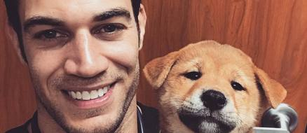 Evan Antin: the fire celebrity vet who is a gift to us all