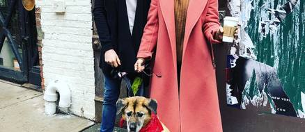 Hilary Duff & Matthew Koma Adopt Senior Dog