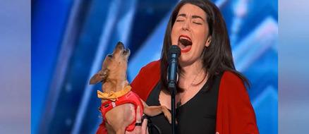 America's Got Talent Pam and Casper the Singing Chihuahua