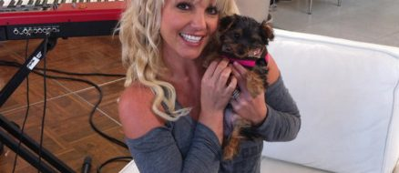 Britney Spears Spends $30,000 on Toys and Clothes for Her Dogs