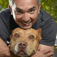 Cesar Millan's pet Daddy
