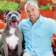 Cesar Millan's pet Junior