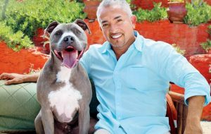 Cesar Millan - Junior
