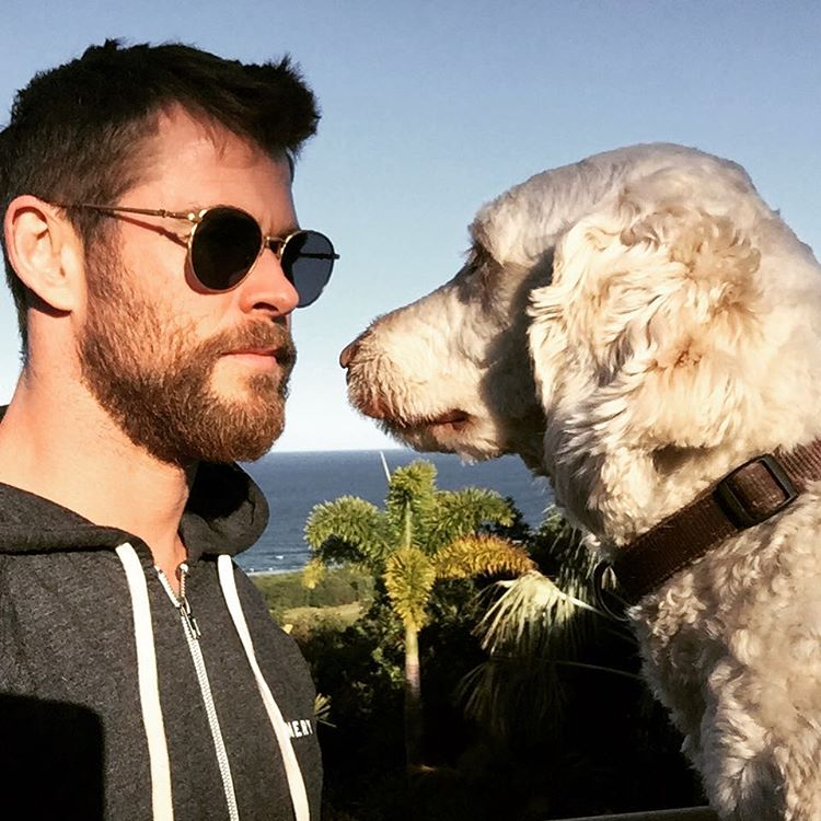 Chris Hemsworth Stare Off