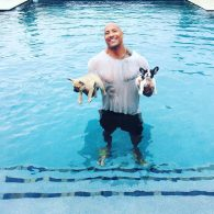 "Dwayne ""The Rock"" Johnson's pet Hobbs and Brutus"