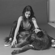 Kristen Stewart's pet Jack, Lily, Tommy and Lola