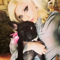 Lady Gaga's pet Miss Asia Kinney