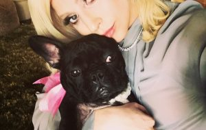 Lady Gaga with Asia
