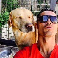 Cristiano Ronaldo's pet Marosca
